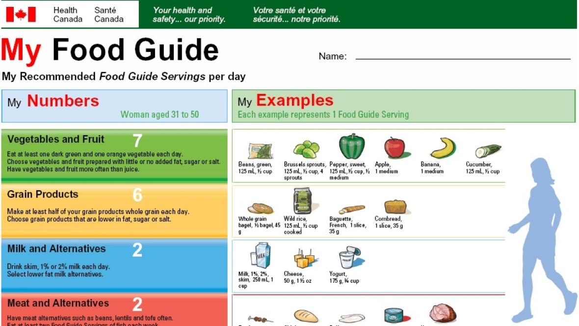 Obesity rates in canada and changes to canada's food guide.