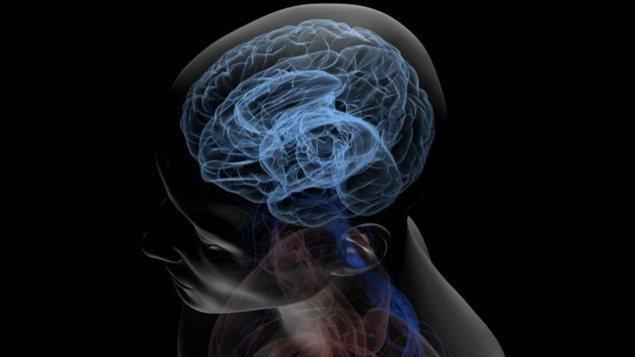 99% of ailing NFL player brains sport hallmarks of neurodegenerative disease