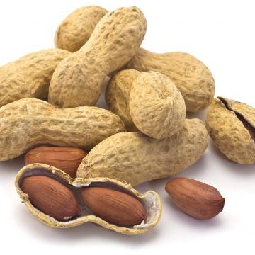 Australian researchers report breakthrough in treatment of peanut allergy