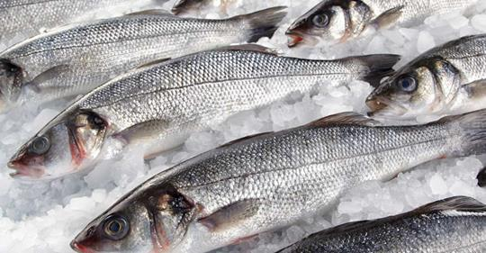 Eat fish for a longer life, study suggests