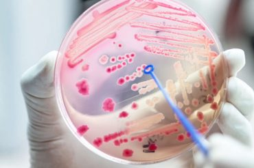 Antibiotic resistance has doubled in the last 20 years, new research finds