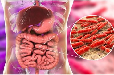 Half the drugs in use damage gut bacteria, says new study