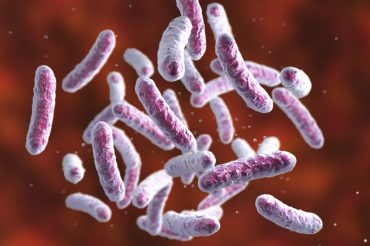 Gut microbes could be key to treating ulcerative colitis